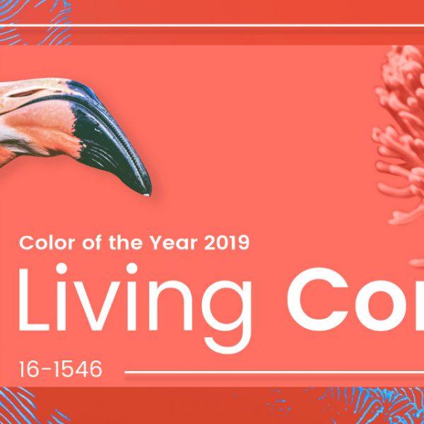 Culoarea anului 2019, CORAL!